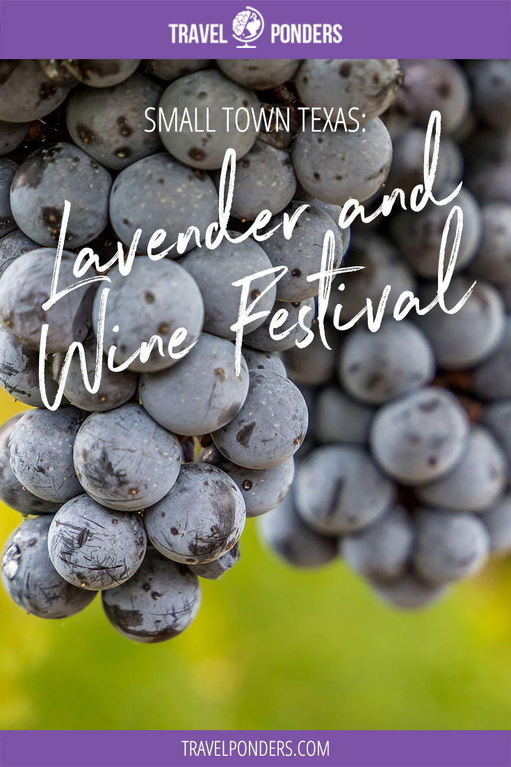 Lavender and Wine Festival