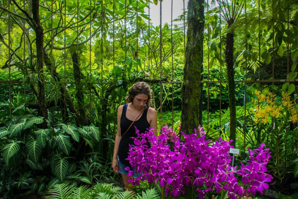 Natalie in the Orchid Garden in Singapore