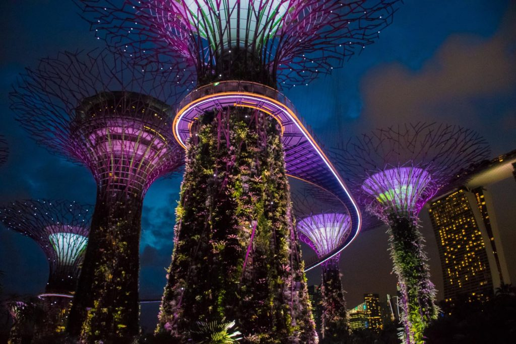 The Super Trees of Singapore